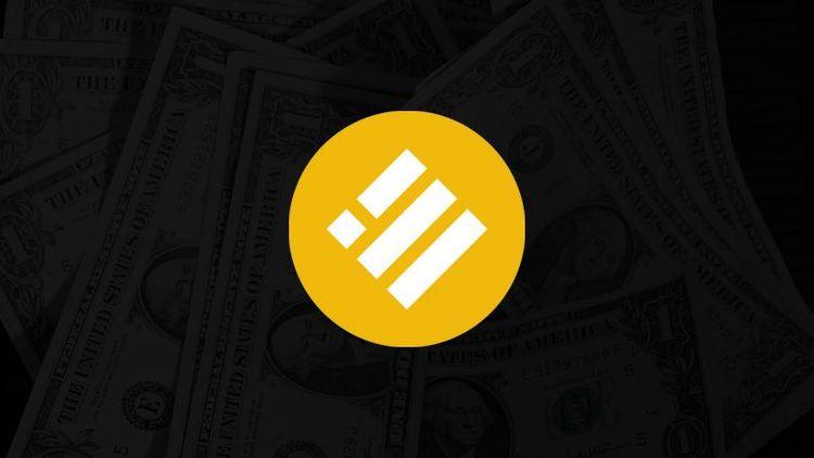 Обзор стейблкоина Binance USD (BUSD)